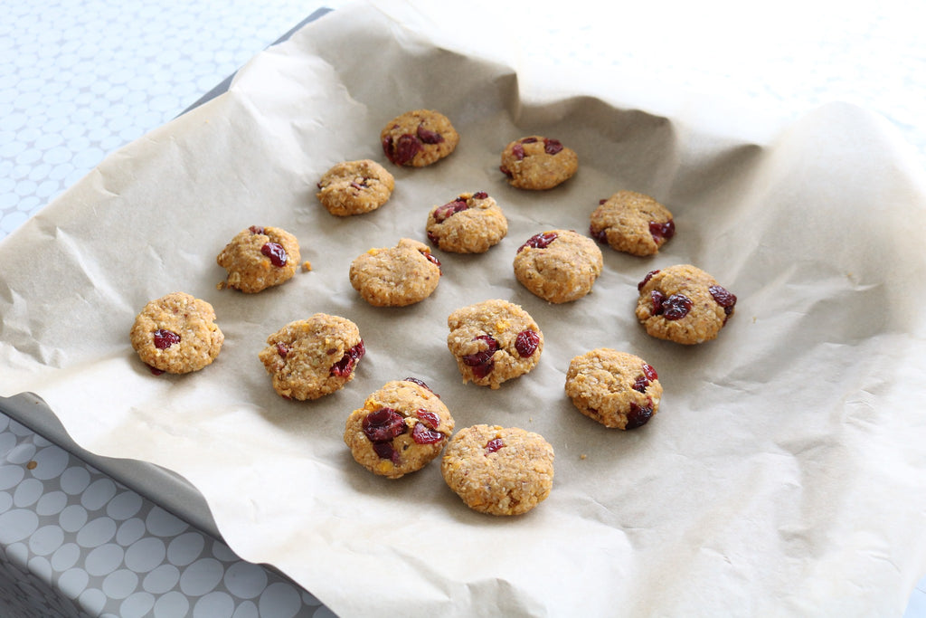 Breakfast Cookies (you can share with your dog!)