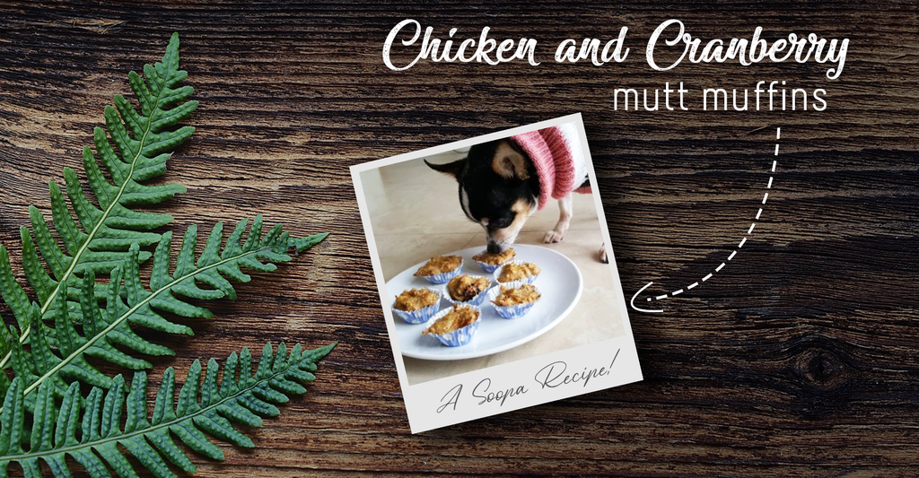 Chicken & Cranberry Mutt Muffins