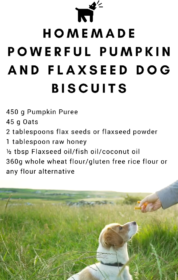 Pumpkin and flaxseed dog biscuits