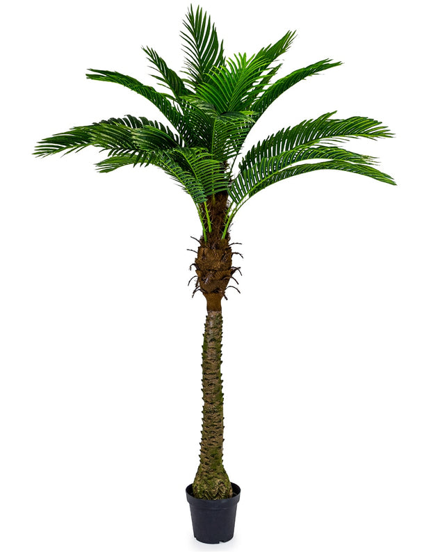 Giant Artificial Palm Tree