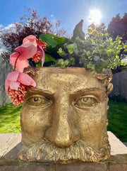 Gold Large Classical Face Planter