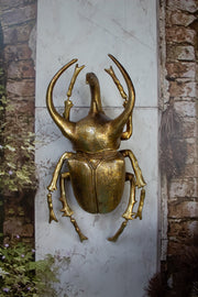 Gold Atlas Beetle Wall Decoration