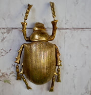 Gold Ground Beetle Wall Decoration