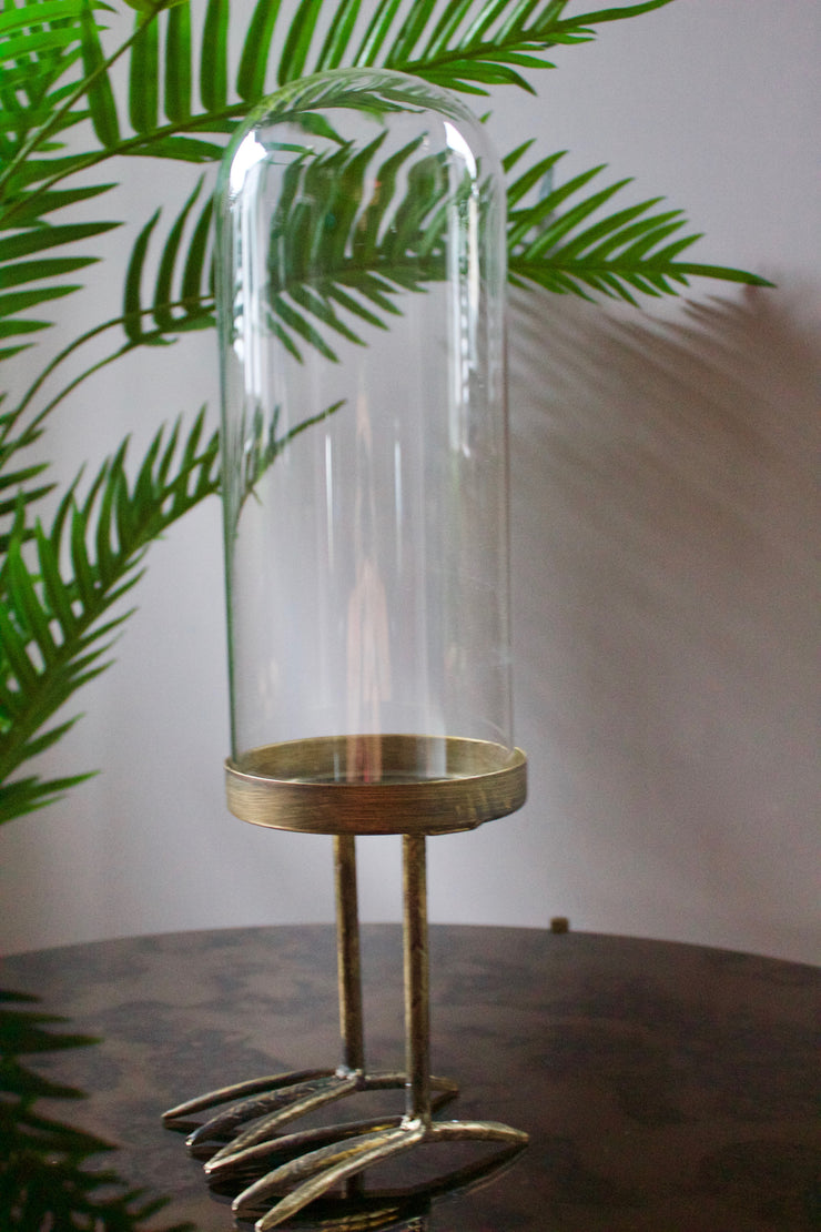 Glass Display Dome With Bird Feet Base