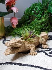 Crocodile Wicker Effect Plant Holder