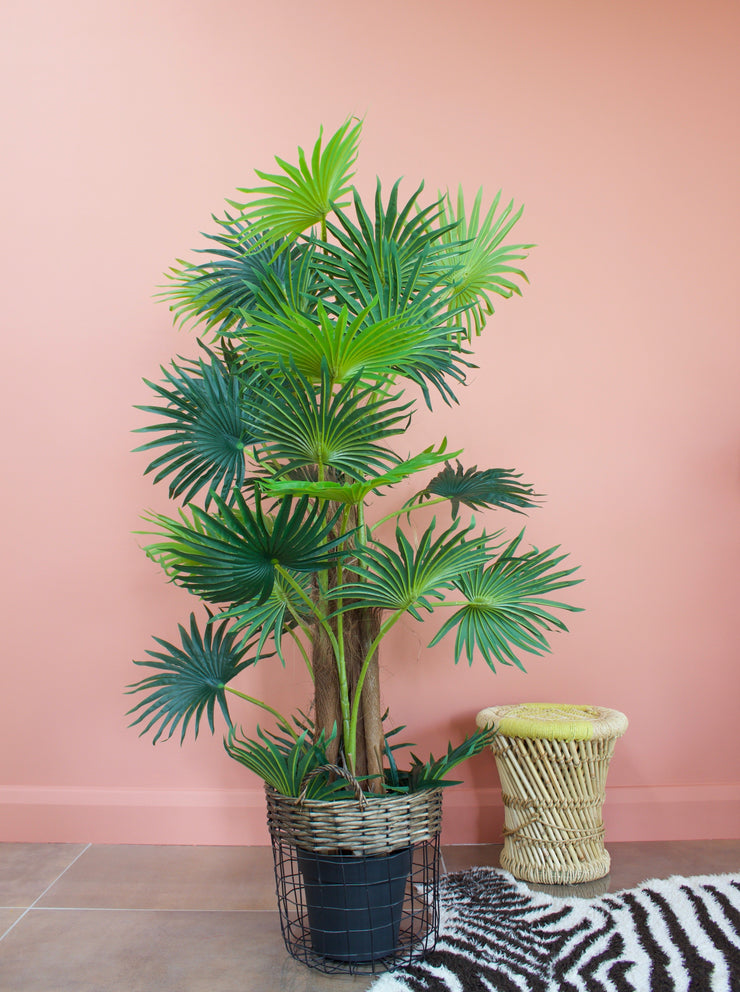 Faux Fan Leaf Palm Tree