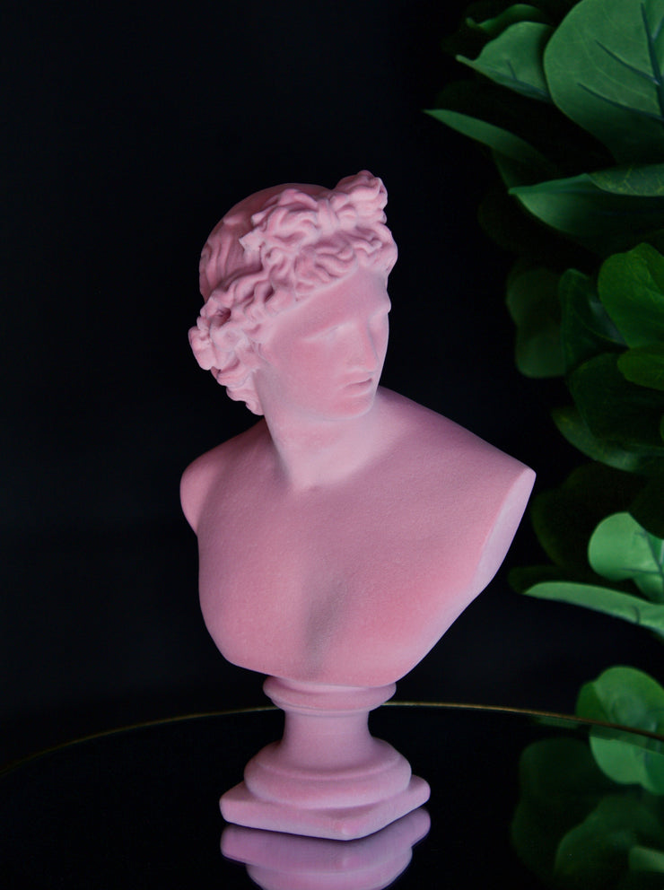 Pink Flocked Large Apollo Bust