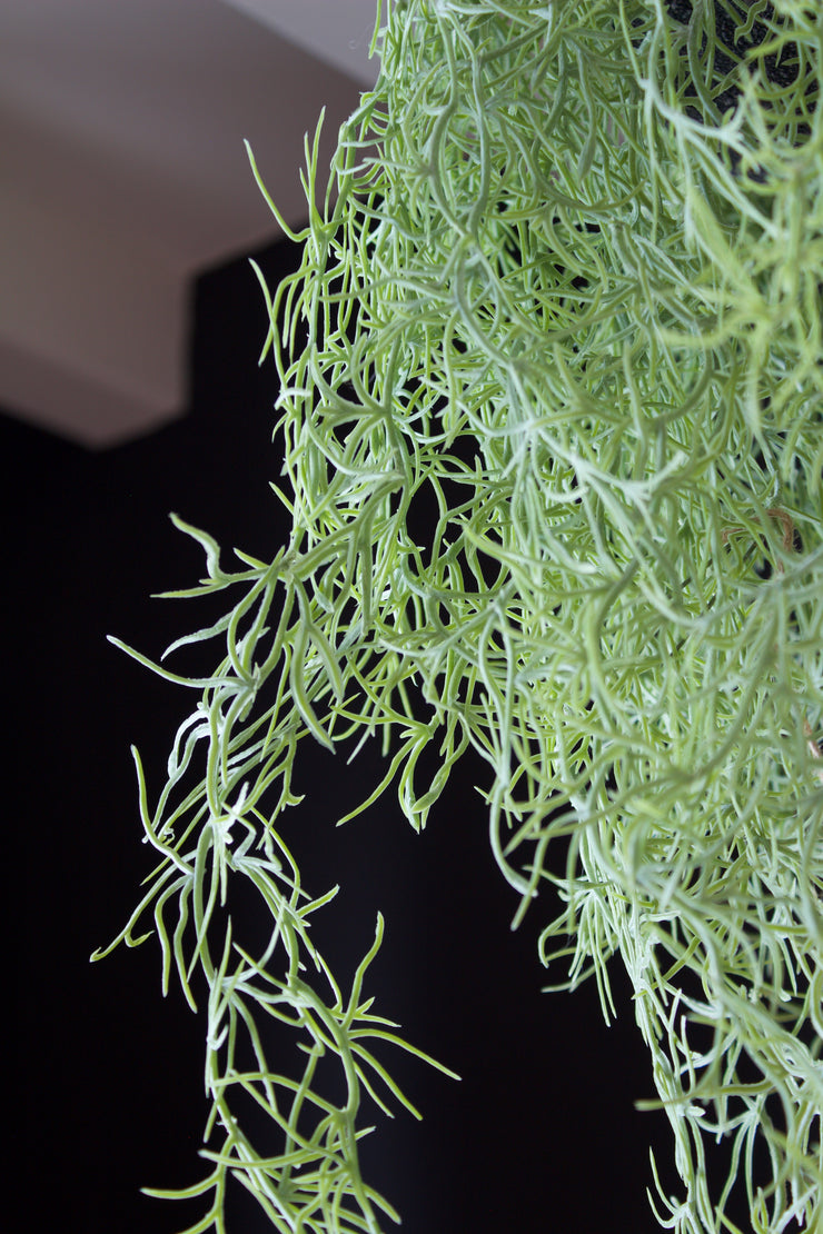 Ornamental Airplant Artificial Hanging Arrangement