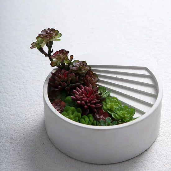 Stepped Succulent Planter & Holder
