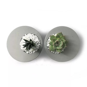 Oval Succulent Planter & Holder