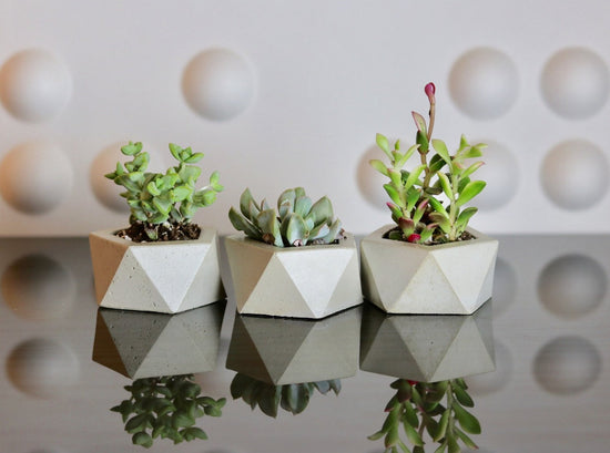 Hexagonal Candle Holder (Set of 3)