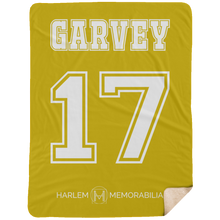 GARVEY 17 Extra Large Fleece Sherpa Blanket - 60x80 (various colors)