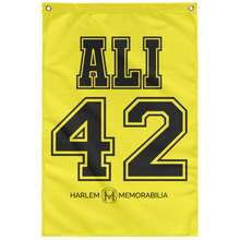 ALI 42 Wall Flag (various colors)