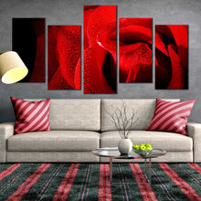 5pC_red