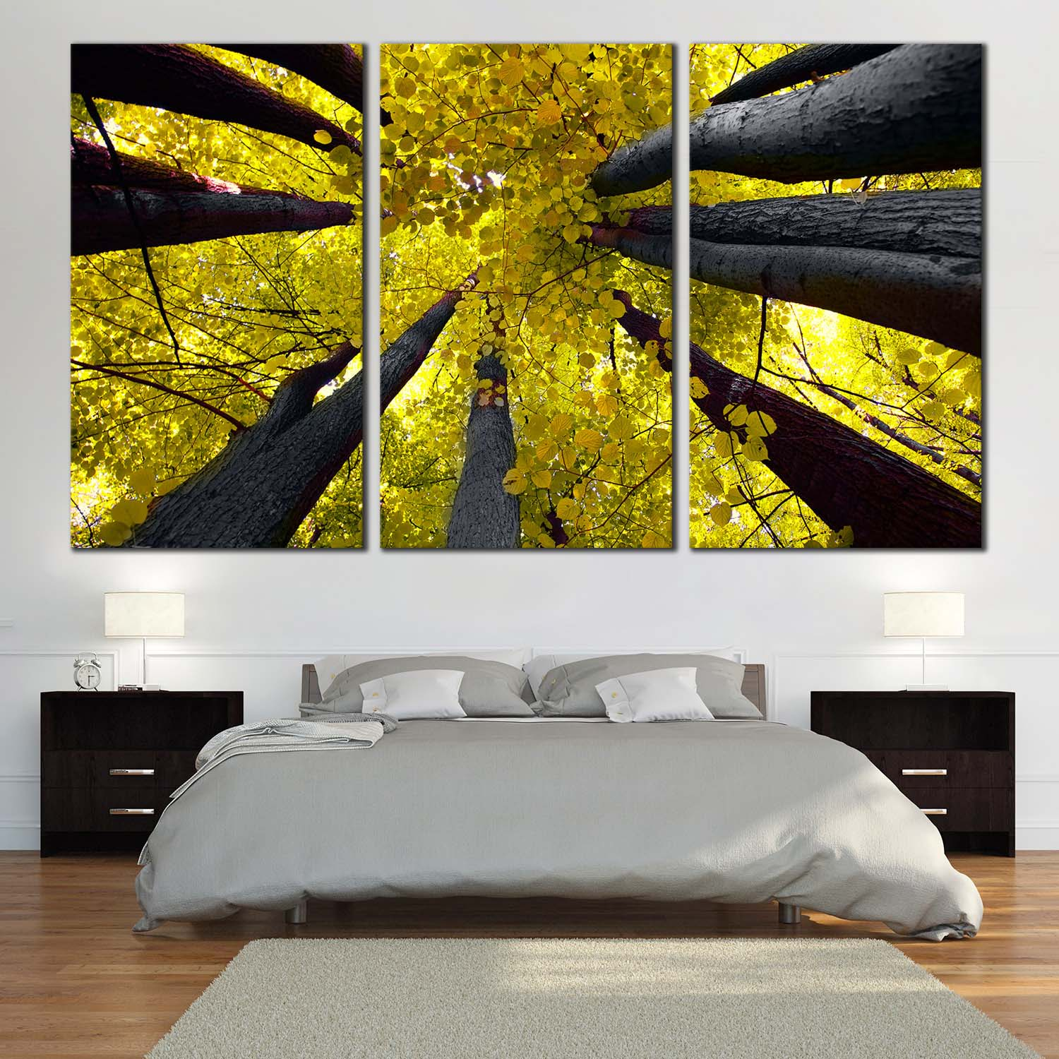 Looking Up Into The Yellow Canopy Of Deciduous Trees Wall Art ...
