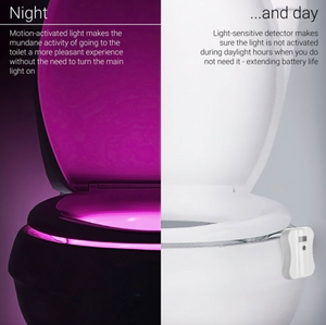 Motion-Activated Toilet LED Night Light - Slingkee-Wholesale