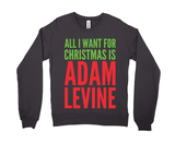 All I Want For Christmas Is Adam Levine (hoodie)