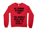 My Opinion Offended You