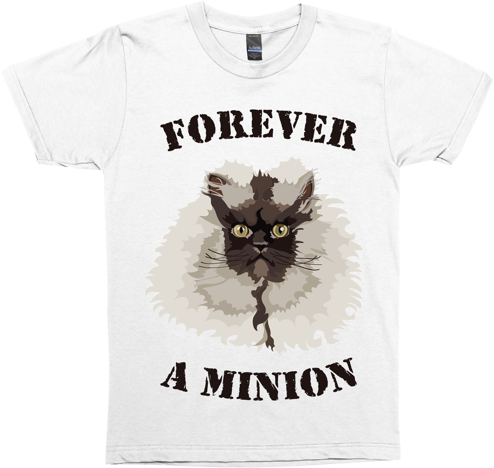 Forever A Minion - Colonel Meow