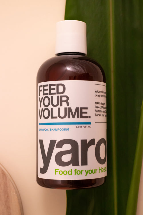 Shampoing - Feed Your Volume