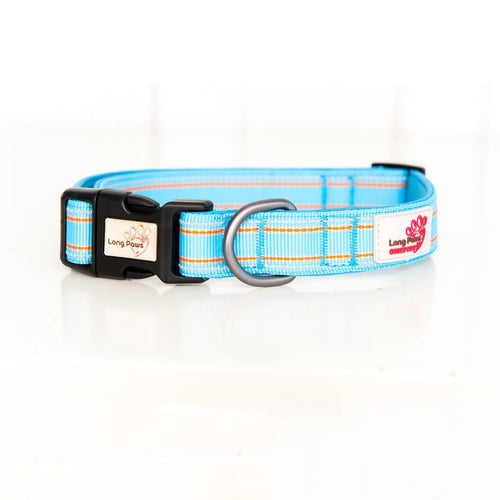 Comfort Collar Blue-Pets-HOUSE of BOTTA