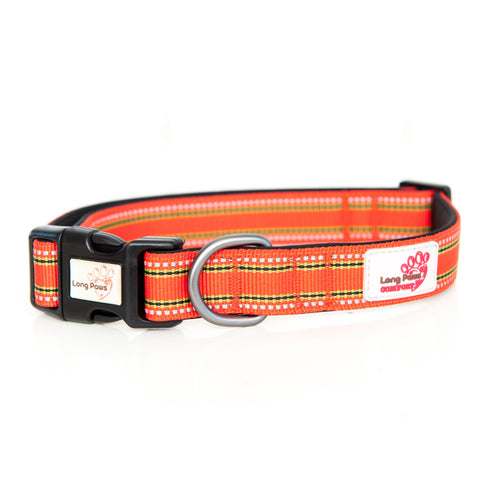 Comfort Collar Orange-Pets-HOUSE of BOTTA