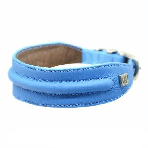 D&H Horizon Hound Collar Blue-Pets-HOUSE of BOTTA