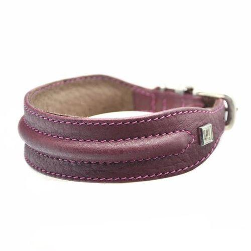 D&H Horizon Hound Collar Burgundy-Pets-HOUSE of BOTTA