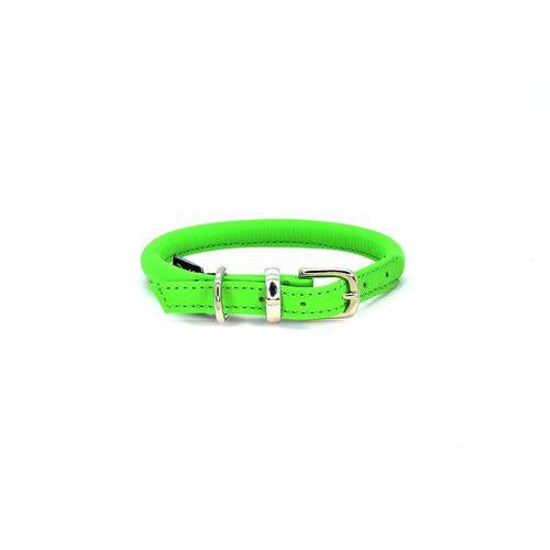 D&H Rolled Leather Collar Green-Pets-HOUSE of BOTTA