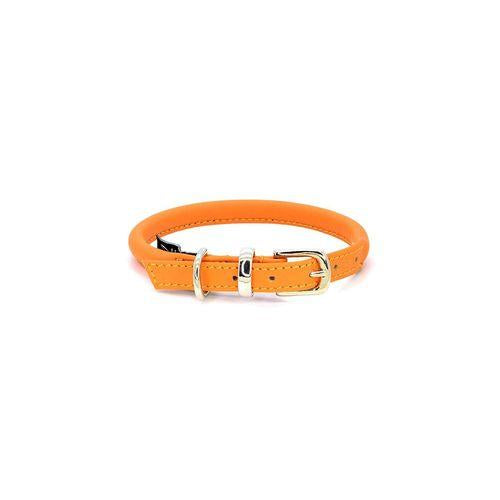D&H Rolled Leather Collar Orange-Pets-HOUSE of BOTTA