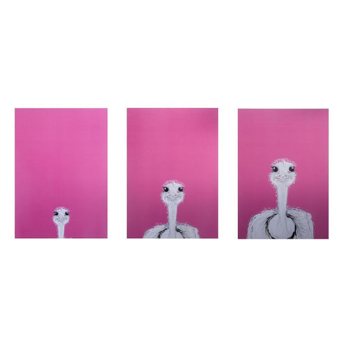 Pink Camilla Ostrich Prints-Homeware-HOUSE of BOTTA