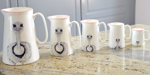 Set of 5 Jugs-Homeware-HOUSE of BOTTA