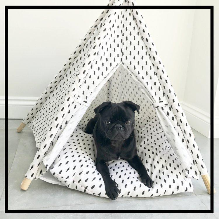 The Balmoral Teepee-Pets-HOUSE of BOTTA