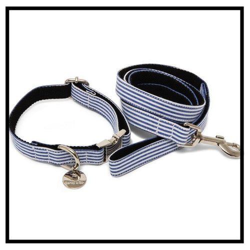 The Chichester Collar and Lead Set-Pets-HOUSE of BOTTA