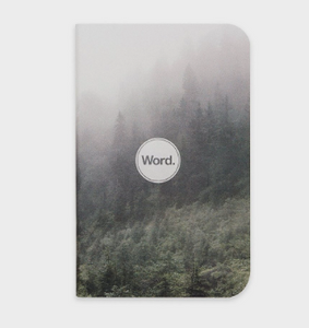 Word Notebook, Mist (3-pk)