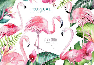 Creative design | Cliparts | Patterns | Vectors.. with Flamingo!