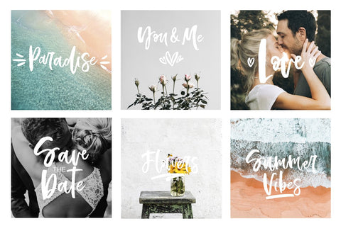 Bellamy Script by Calamar in Fonts  Script - diy - font handmade calligraphy lettering vector type font brush wedding postcard quate