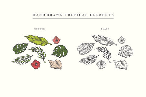 Hand Drawn Tropical Vector Elements by IconsByKassy