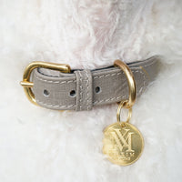 best  designer dog collar