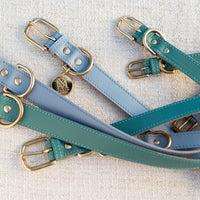 Luxury designer dog collar set - Pastel