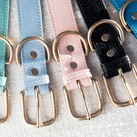 Luxury designer dog collar set - Pastels