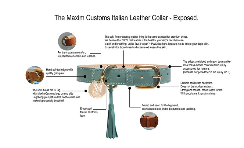products/MaximCustoms-dog-collar-graphic-1280.jpg