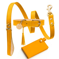 Energy Yellow Collar Set