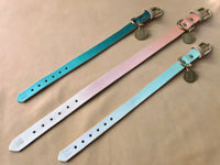 Dog Collars & Matching Bracelets