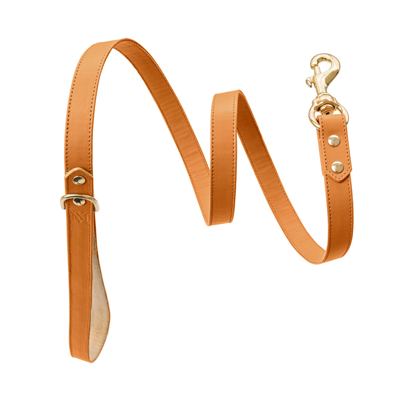 products/handmade-leather-nut-nature-dog-leash.jpg