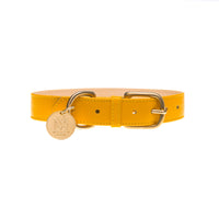 Designer dog collar set - Yellow