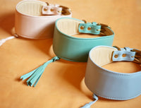 Greyhound, Whippet, Italian Greyhound collars -Luxury leather - pastel pink, green blue