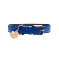 Elegant blue designer dog collars