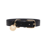 Elegant black designer dog collar set