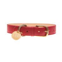 Red designer dog collar set